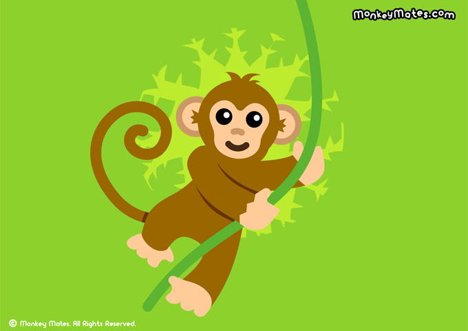 Mumu Monkey swinging on a jungle vine