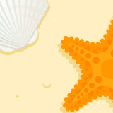 Starfish and shell on the beach illustration